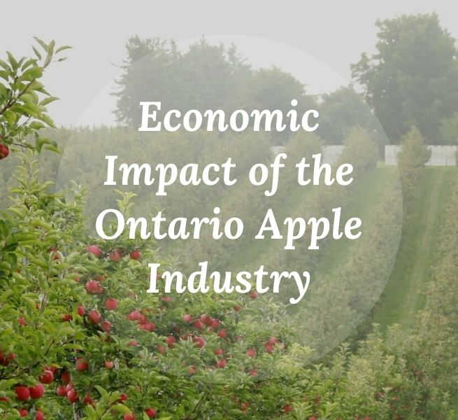 Economic Impact of the Ontario Apple Industry